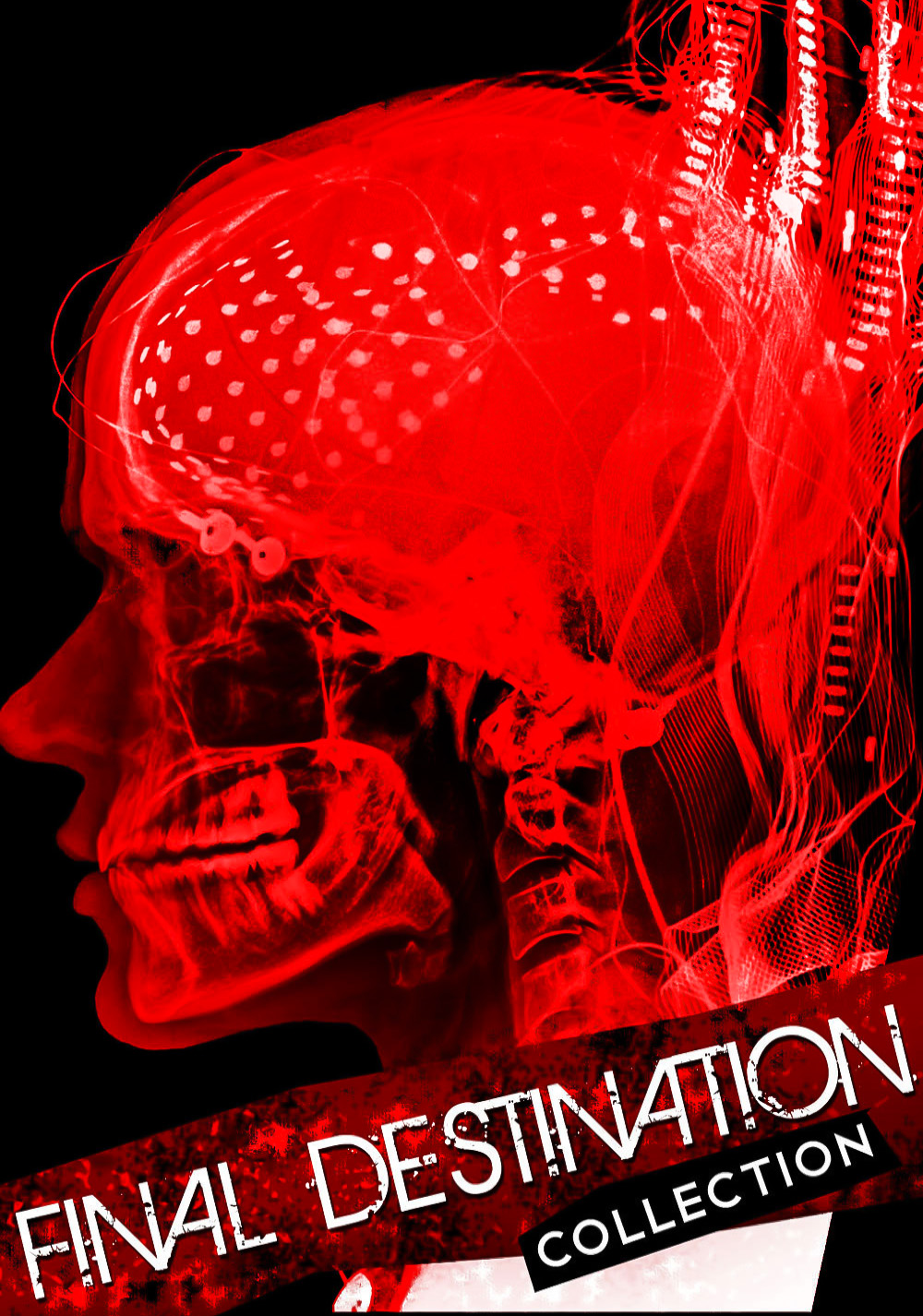 Final Destination ( โกงความตาย ) Collection